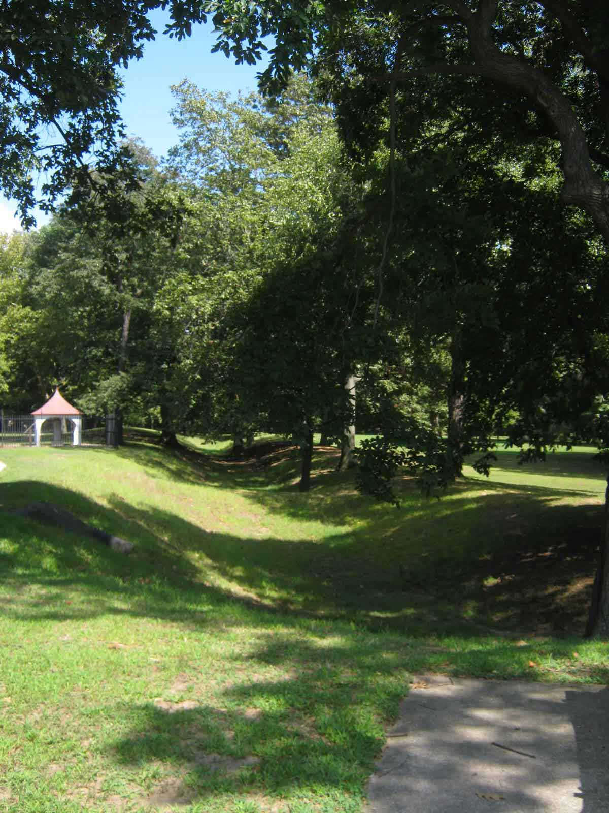 There are some great wooded areas at Challenge Grove Park near Cherry Hill, NJ.