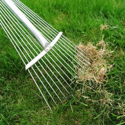 One of our summer lawn care tips fro your Cherry Hill, NJ property is to get rid of your thatch using a dethatching rake or with core aeration.