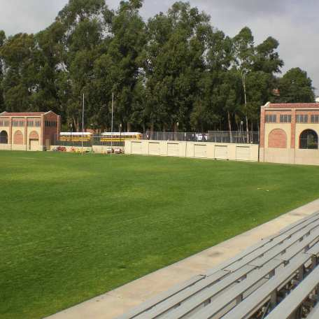 Athletic Fields Schools lawn