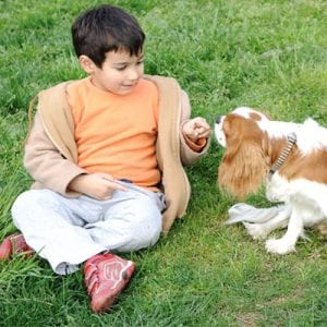 child playing in green grass lawn with dog