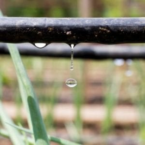 Drip irrigation is an excellent and popular DIY Irrigation method here in Duluth, GA.