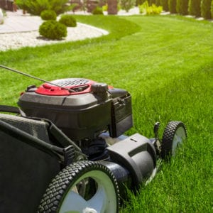 Proper mowing height is a great way to prevent lawn fungus in your Bethlehem, GA lawn.