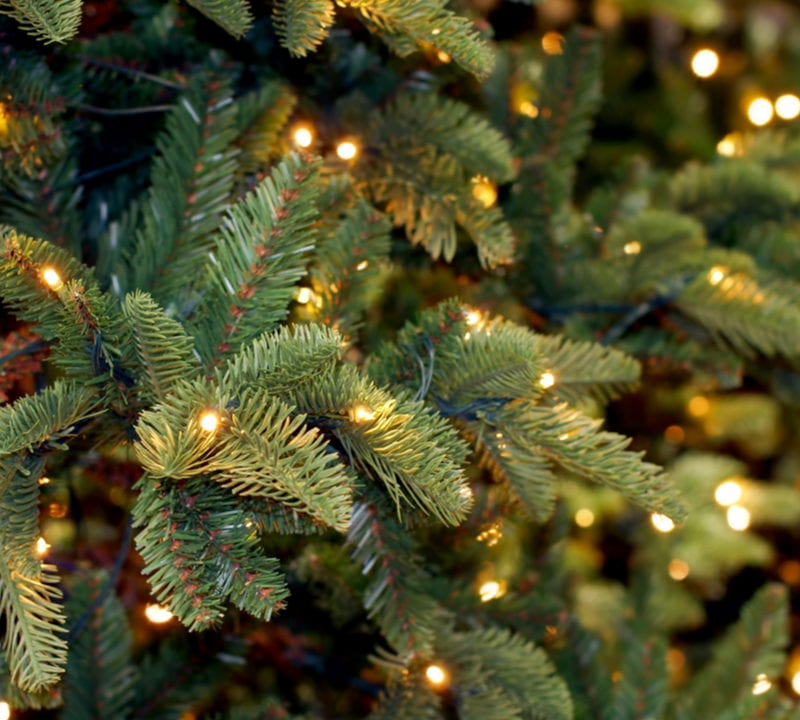 Christmas tree disposal is an important thing to consider at the end of the holiday season in Bethlehem, GA.