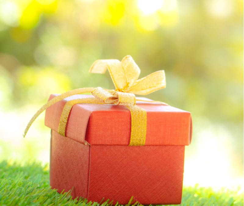 The best green holiday gift is the gift of a lawn care program from Environmental Turf Management here in Bethlehem, GA.
