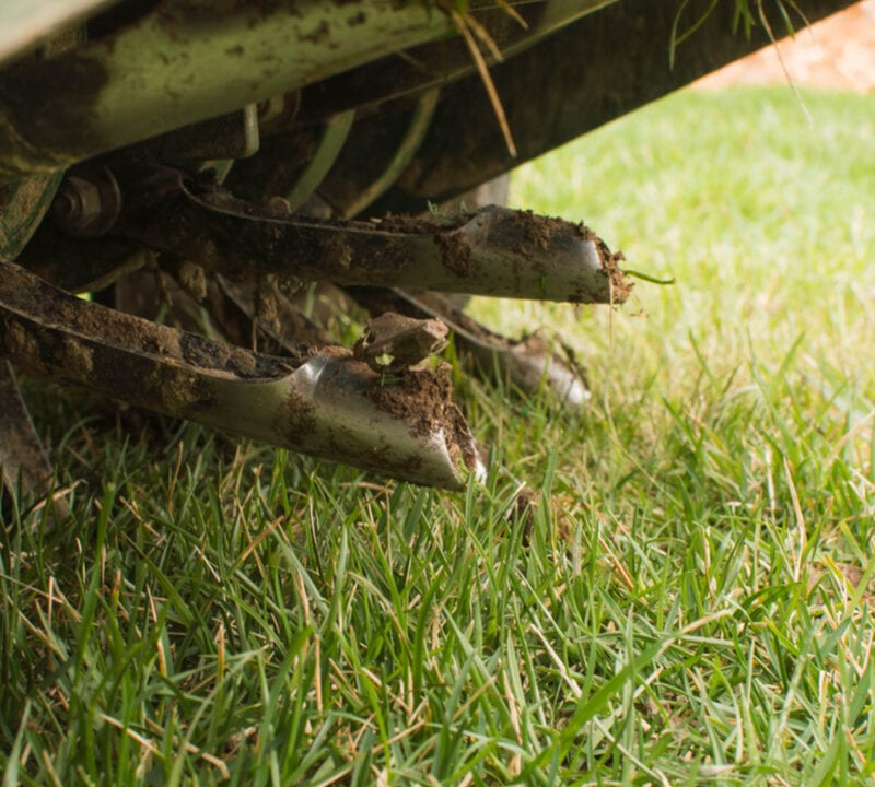 core aeration on lawn